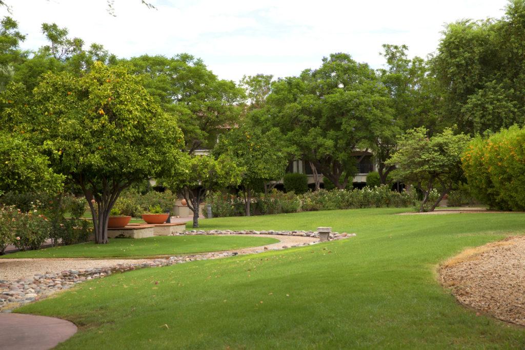 Scottsdale Princess Fragrance Garden Casey Green Weddings